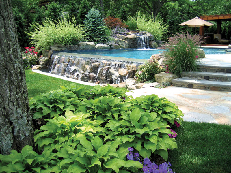Free landscape design software landscape design for privacy for Luxury landscape design
